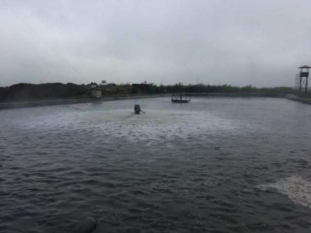 Aireador Aqua turbo
